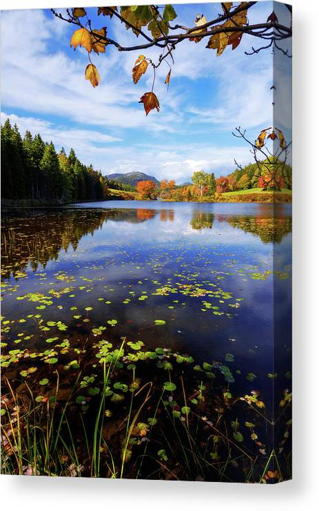 Anticipation Canvas Print featuring the photograph Anticipation by Chad Dutson