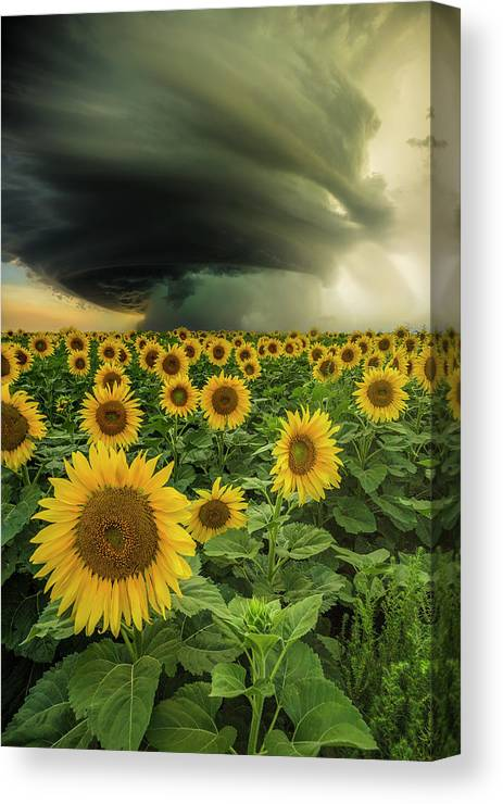 Supercell Canvas Print featuring the photograph Beautiful Destruction by Aaron J Groen