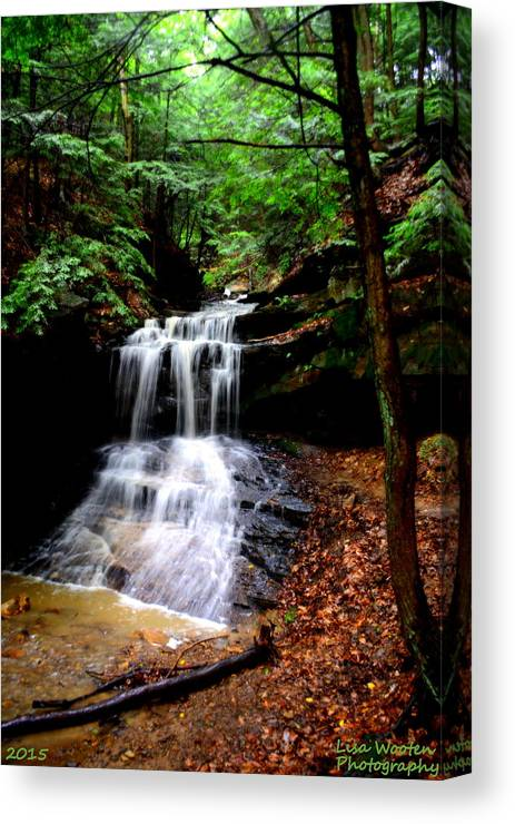 Mcconnells Mills State Park Pa Canvas Print featuring the photograph Beauty In The Woods by Lisa Wooten