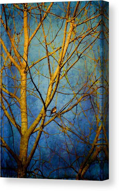 Trees Canvas Print featuring the photograph Bird's The Word by Jan Amiss Photography
