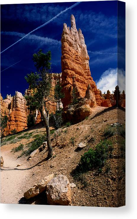 Bryce Canyon Canvas Print featuring the photograph Bryce Canyon 10 by Art Ferrier