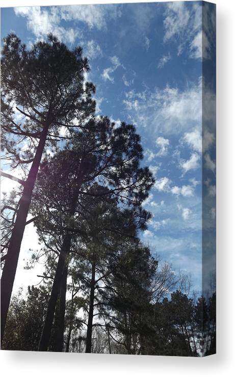 Sky Canvas Print featuring the photograph Carolina Blue Sky by FD Brake