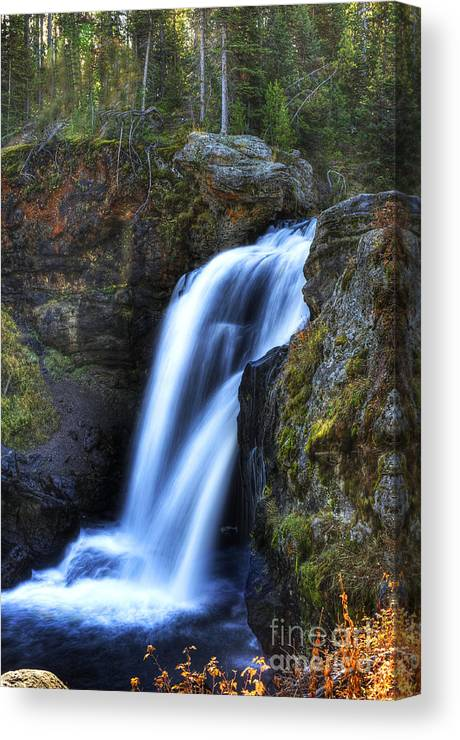 Places Canvas Print featuring the photograph Crayfish Falls by Dennis Hammer