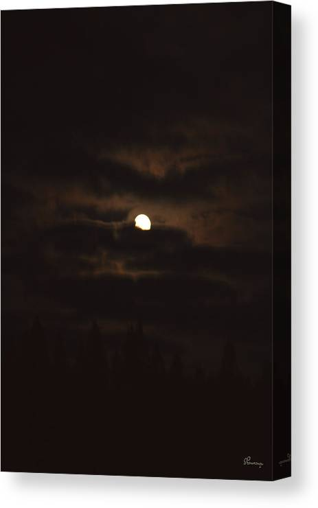 Moon Clouds Night Evening Light Cloudy Sky Trees Moonlight Moonlit Canvas Print featuring the photograph Dark Night by Andrea Lawrence