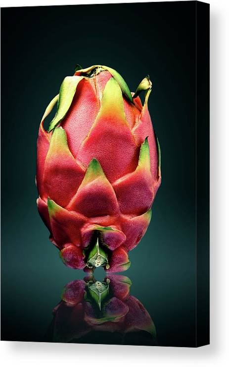 Dragon Canvas Print featuring the photograph Dragon Fruit Or Pitaya by Johan Swanepoel