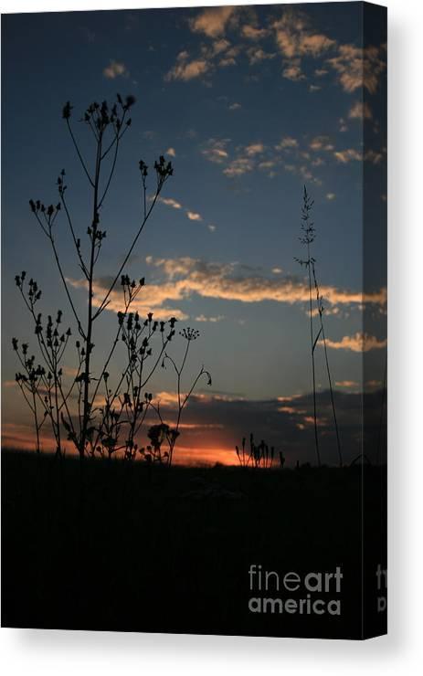 Evening Canvas Print featuring the photograph Evening by Marta Grabska
