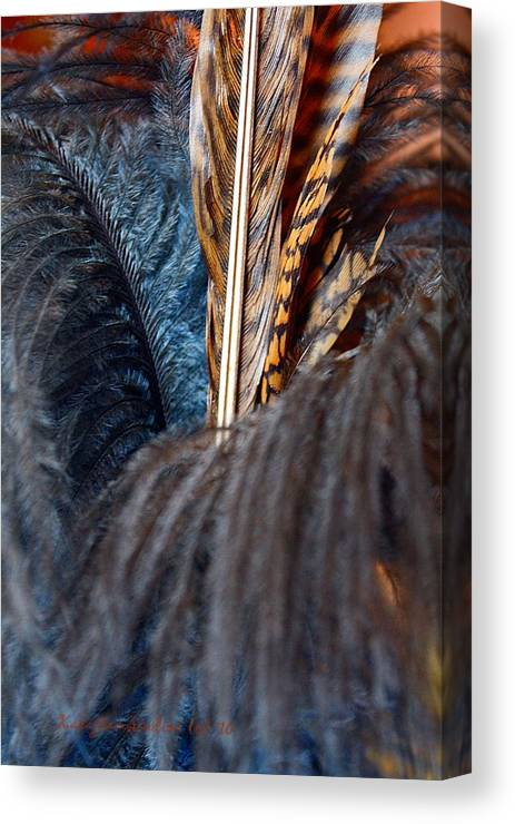 Feathers Canvas Print featuring the photograph Feather Fun by KatagramStudios Photography