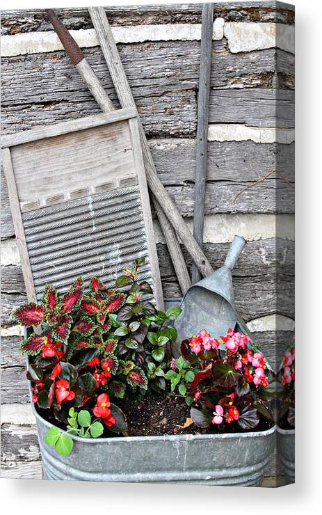 Rural Canvas Print featuring the photograph Flowers And Plants In Wash Tub by Linda Phelps