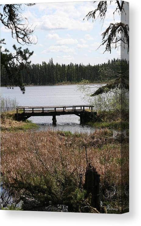 Lake Water Scenery Bridge Flooding Forest Nature Beauty Trees Canvas Print featuring the photograph Forgotten by Andrea Lawrence