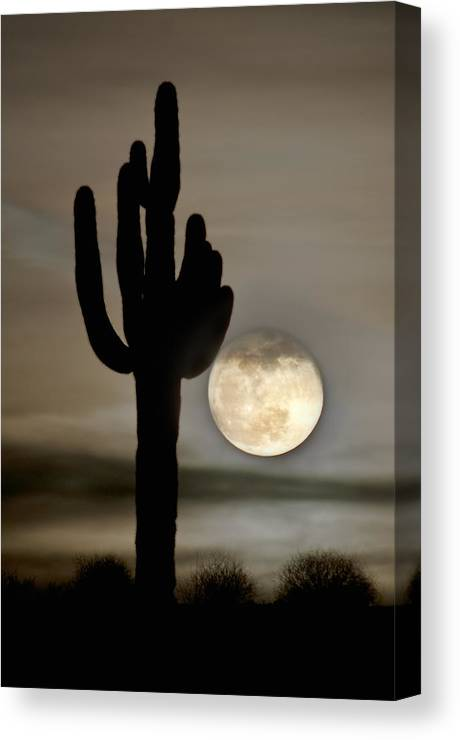 Moon Canvas Print featuring the photograph Full Moon by Jacek Joniec