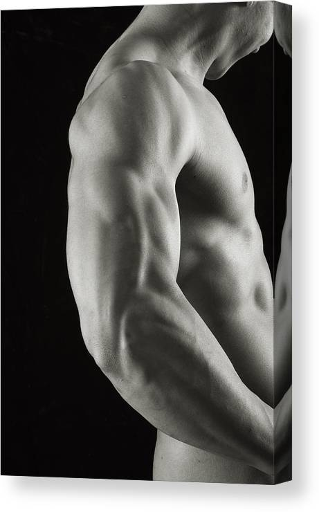 Male Canvas Print featuring the photograph Intricacies by Thomas Mitchell