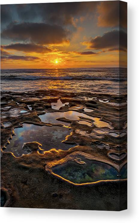 California Canvas Print featuring the photograph La Jolla Tidepools by Peter Tellone