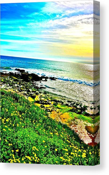 Laguna Beach Canvas Print featuring the photograph Laguna Beach by Jeremy Stewart