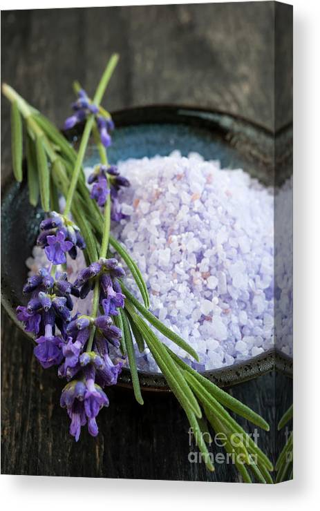Bath Salts Canvas Print featuring the photograph Lavender Bath Salts by Elena Elisseeva