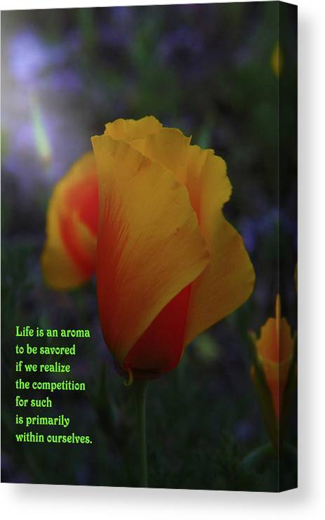Poppy Canvas Print featuring the photograph Life Is An Aroma by Jeff Swan