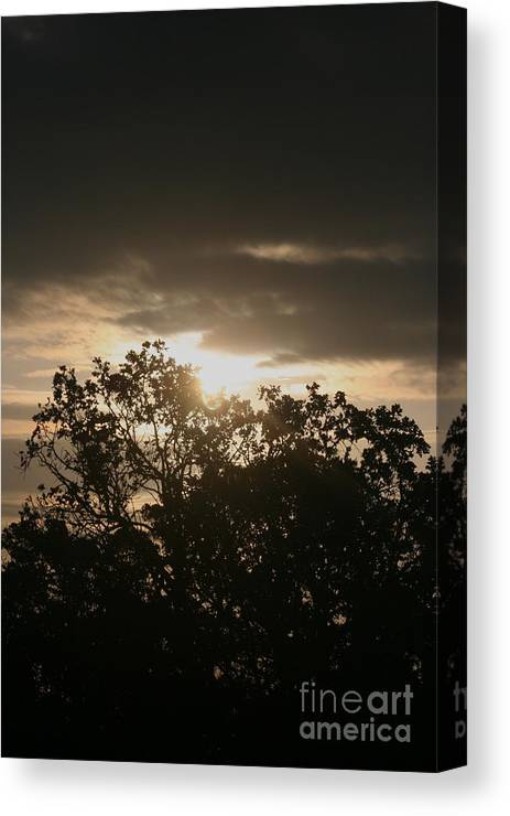Light Canvas Print featuring the photograph Light Chasing Away The Darkness by Nadine Rippelmeyer