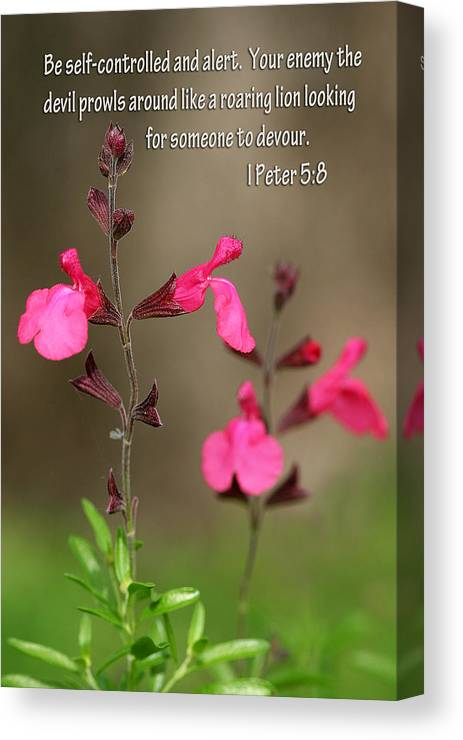 Scripture Canvas Print featuring the photograph Little Pink Wildflowers With Scripture by Linda Phelps