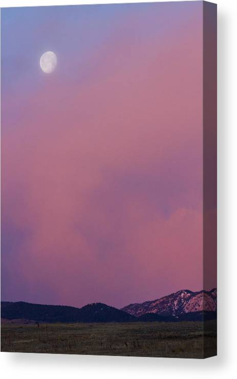Moon Canvas Print featuring the photograph Moon Setting First Light Sunrise Boulder County Colorado by James BO Insogna