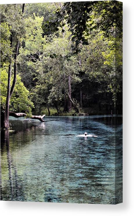 Morning Swim Canvas Print featuring the photograph Morning Swim by Warren Thompson