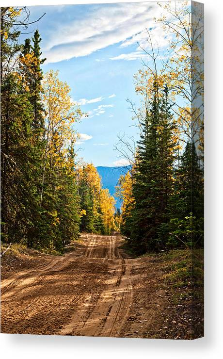 Off The Alaska Highway Canvas Print featuring the photograph Off The Alaska Highway by Cathy Mahnke