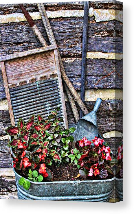 Creative Canvas Print featuring the photograph Old Wash Tub With Plants by Linda Phelps