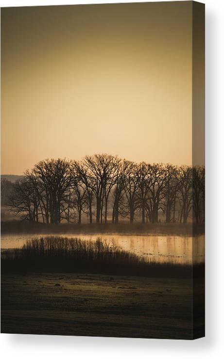 Marsh Canvas Print featuring the photograph On The Marsh by David Jilek
