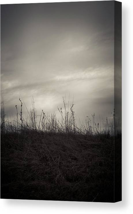 Landscape Canvas Print featuring the photograph Over The Hill by David Jilek