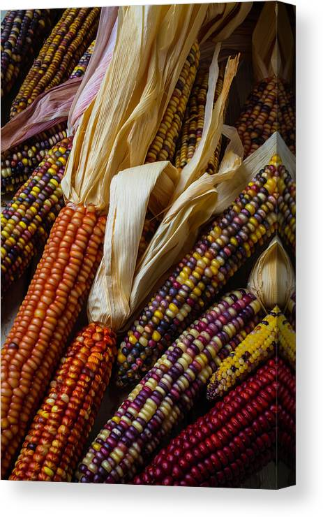 Indian Canvas Print featuring the photograph Pile Of Indian Corn by Garry Gay