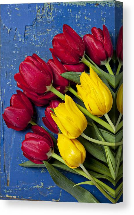 Red Yellow Tulips Canvas Print featuring the photograph Red And Yellow Tulips by Garry Gay