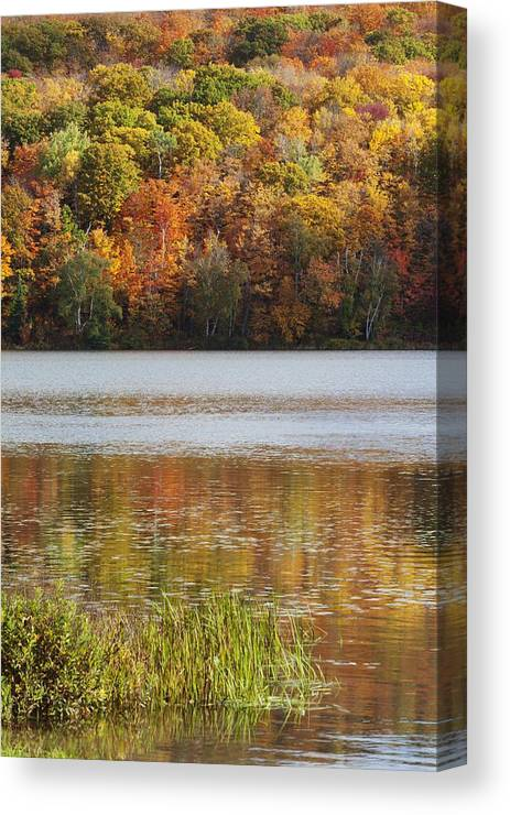 Shoreline Canvas Print featuring the photograph Reflection Of Autumn Colors In A Lake by Susan Dykstra
