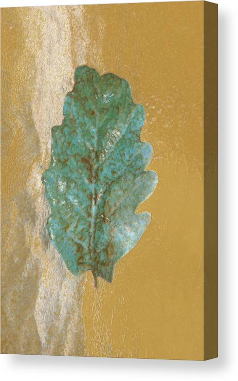 Leaves Canvas Print featuring the photograph Rustic Leaf by Linda Sannuti
