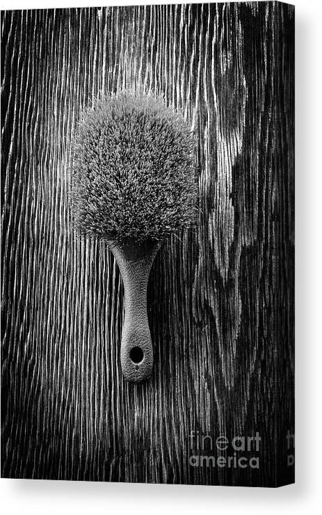 Art Canvas Print featuring the photograph Scrub Brush Up Bw by YoPedro