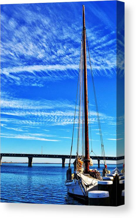 Skipjack Canvas Print featuring the photograph Skipjack by Kelly Reber
