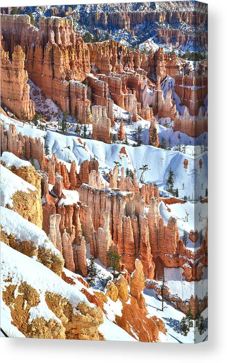 Bryce Canyon National Park Canvas Print featuring the photograph Snowy Queen's Garden by Ray Mathis