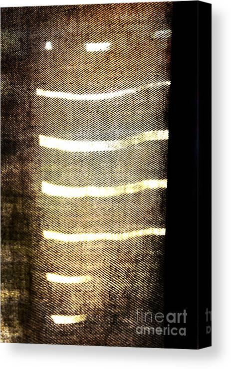 Abstract Canvas Print featuring the photograph Stripes And Texture by Todd Blanchard