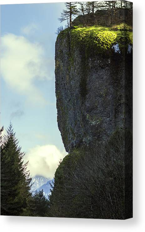 Cliff Canvas Print featuring the photograph The Cliff by Hans Franchesco