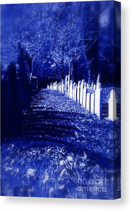 Halloween Canvas Print featuring the photograph Waking In The Night by Linda Galok