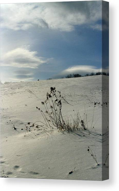 Vermont Canvas Print featuring the photograph Winter Hill by Paula Deutz