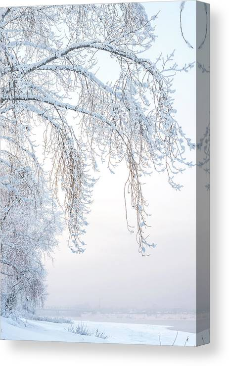 Adventure Canvas Print featuring the photograph Winter Landscape With Snow-covered Trees by Oleg Yermolov