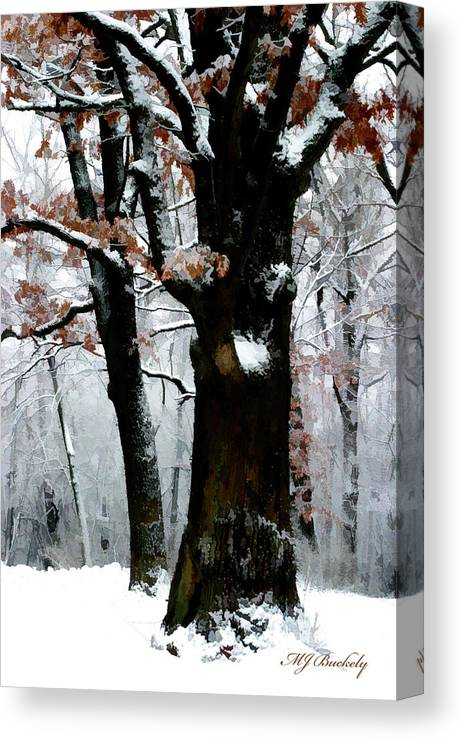 Winter Canvas Print featuring the photograph Winter Tree Right by Marti Buckely