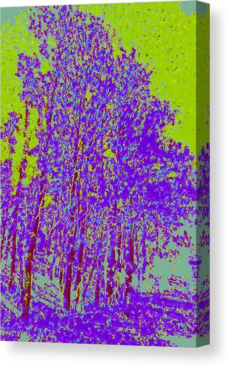 Canvas Print featuring the digital art Yellow Trees D4 by Modified Image