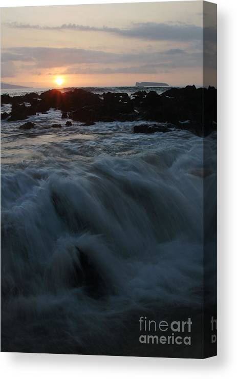 Aloha Canvas Print featuring the photograph Yielding by Sharon Mau