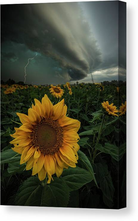 Tornado Warned Canvas Print featuring the photograph Disorder by Aaron J Groen