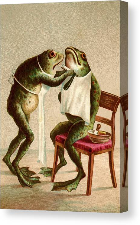 Satire Canvas Print featuring the digital art Frog Getting A Shave by Graphicaartis