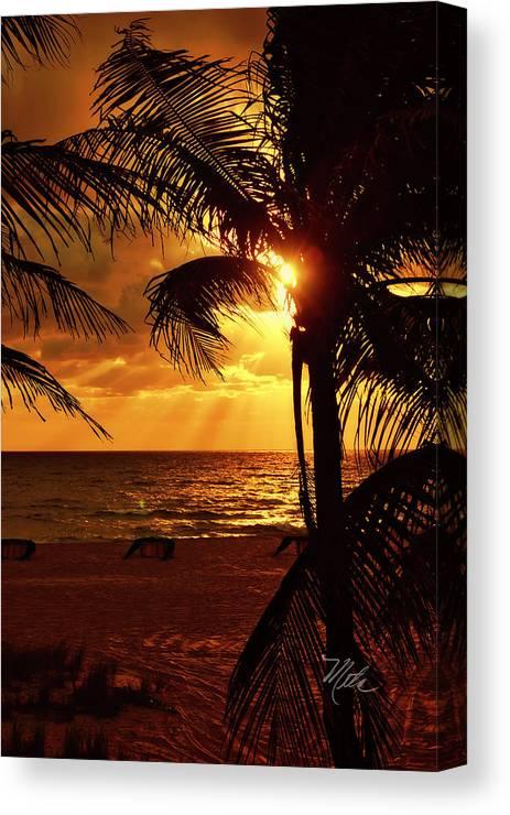 Sunrise Canvas Print featuring the photograph Golden Palm Sunrise by Meta Gatschenberger