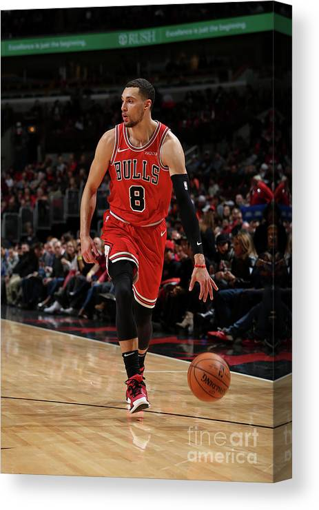 Nba Pro Basketball Canvas Print featuring the photograph Zach Lavine by Gary Dineen