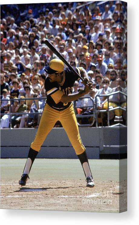 Sports Bat Canvas Print featuring the photograph Willie Stargell by Mlb Photos