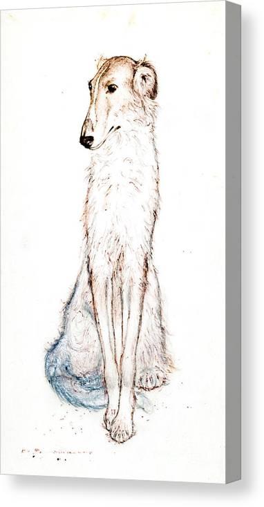 Saluki Canvas Print featuring the drawing Saluki by Kurt Tessmann