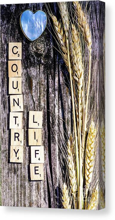 Country Canvas Print featuring the photograph Love Country Life by Gerald Kloss