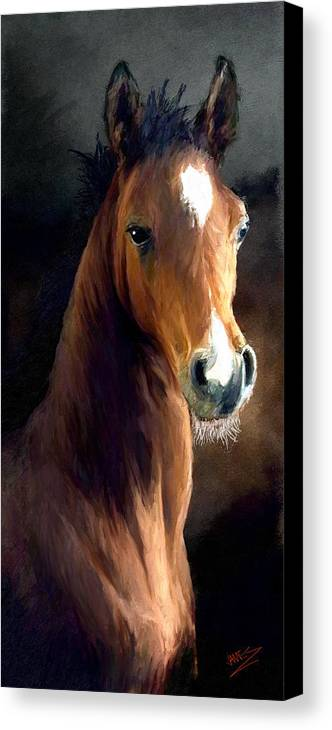Horse Canvas Print featuring the painting Hay Dude by James Shepherd